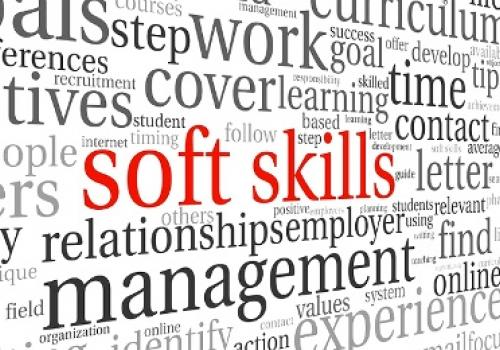 "Webinar in Streaming on-demand: ""Le Soft Skills come elementi strategici di successo nella Rete d'Impresa"""