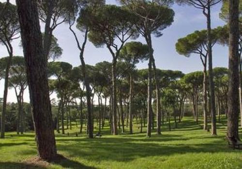 3 Dicembre, Roma: Meeting Regionale LAZIO degli Associati ASSORETIPMI