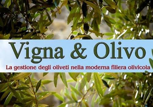 """15 Marzo, Andria: """"Vigna e Olivo 2018"""", la gestione degli oliveti nella moderna filiera olivicola"""